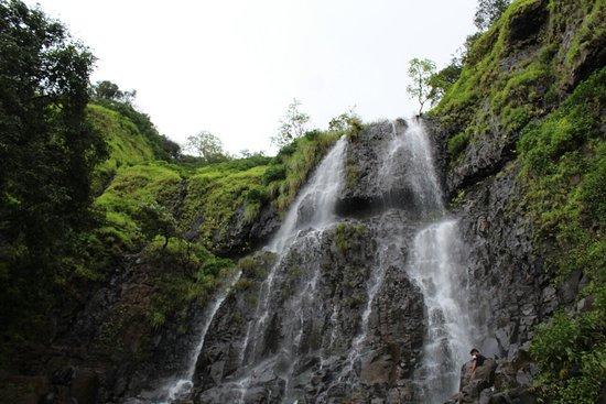 Amboli, الهند: 20180927133435_IMG_2314_large.jpg