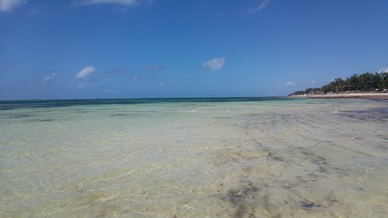 Colourful waters at Nyali Beach