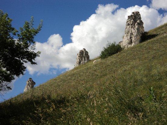 Divnogorye, Russland: Меловые столбы.