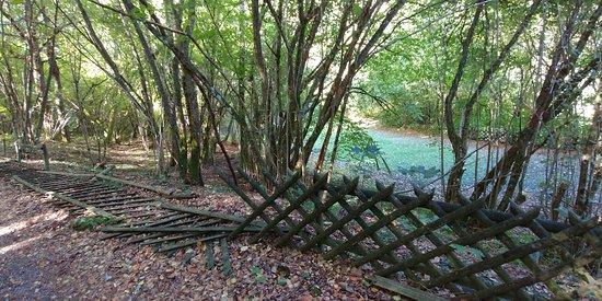 Oberhambach, เยอรมนี: boogschieten in een park, waar ?? en zeer vies en slecht onderhouden