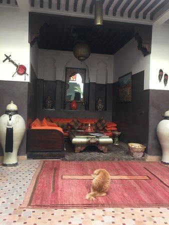 Riad La Porte Rouge Photo