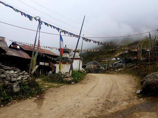 North Sikkim, Ấn Độ: 20181001_074003_large.jpg