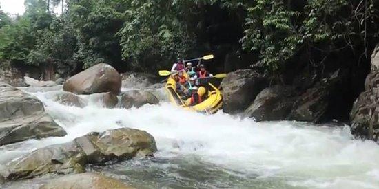 Slim River, Malaysia: IMG-20181002-WA0048_large.jpg
