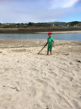 Gwithian Beach: Cricket anyone while the tide is low?The family