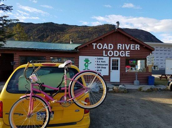Toad River, Kanada: 20180928_093016_large.jpg
