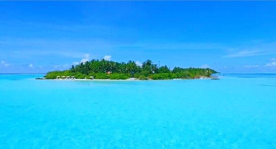 Dhifushi Island: bibeemaldives-videobg_large.jpg