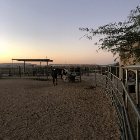Stagecoach Trails Guest Ranch: photo2.jpg