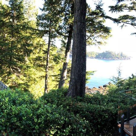 A Snug Harbour Inn : photo3.jpg