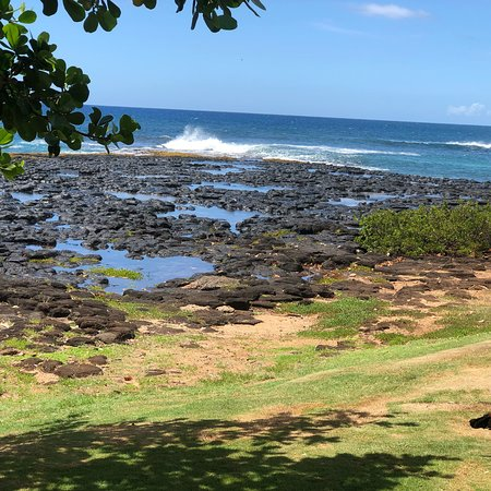 Koloa, Hawaï : photo6.jpg