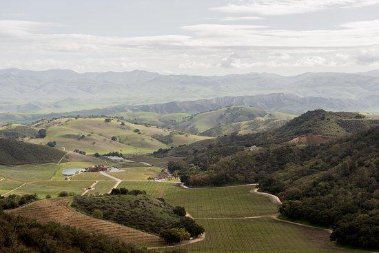 ฮอลลิสเตอร์, แคลิฟอร์เนีย: Eden Rift Vineyards