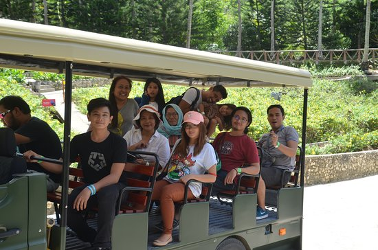 Fun For The Whole Family Picture Of Cebu Safari And Adventure
