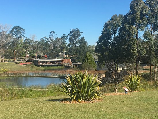 Somersby, Australia: View of the Waterfall Cafe from the sculpture garden