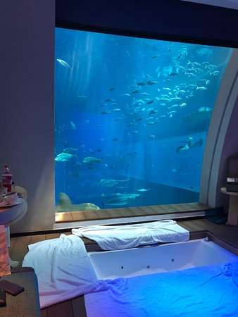 resort world sentosa ocean suites updated 2019 prices hotel rh tripadvisor com