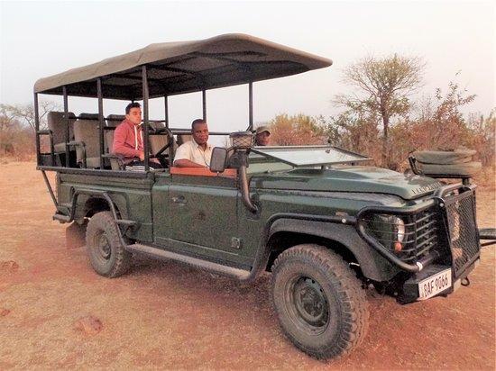 Mikango Safari