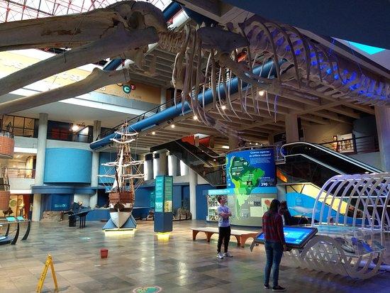 Museu de Ciencias e Tecnologia da PUCRS