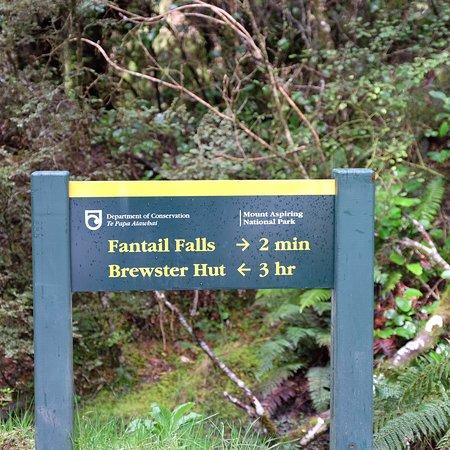 West Coast Region, New Zealand: photo4.jpg