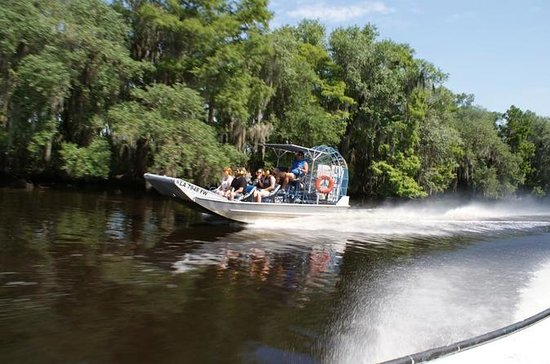 Stor Airboat Swamp Tour med New...