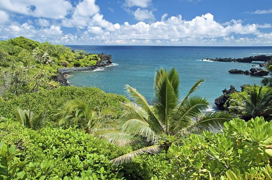 Full-Day Maui Tour: Road to Hana Tour