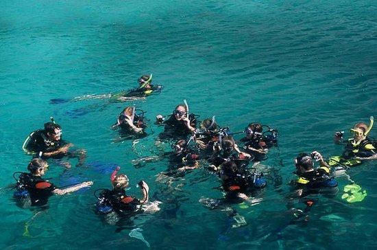 Nha Trang Monkey Island half day tour