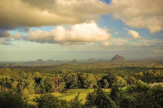 Rainforest e Montville Day Trip da