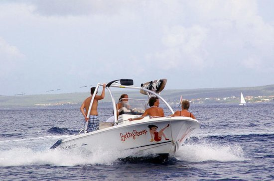 Private boat rental with wakeboarding