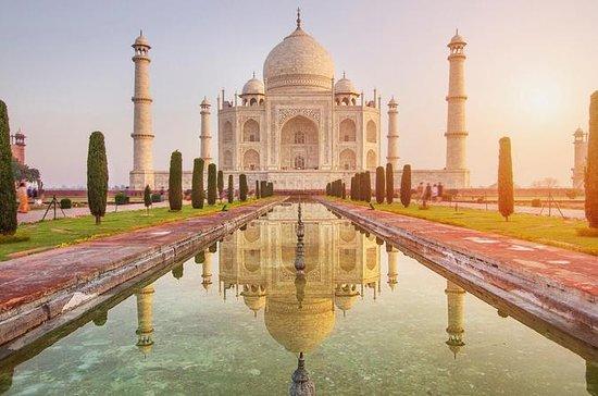 Fra Delhi: Soloppgang Taj Mahal Day Tour