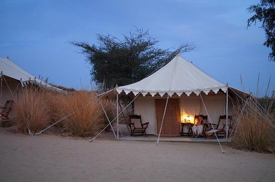 Experience Overnight Desert camp In...
