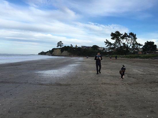 Browns Bay, Nieuw-Zeeland: Walking the kids