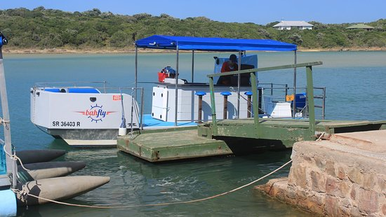 Kenton on Sea cruises: The Bahfly about to be boarded
