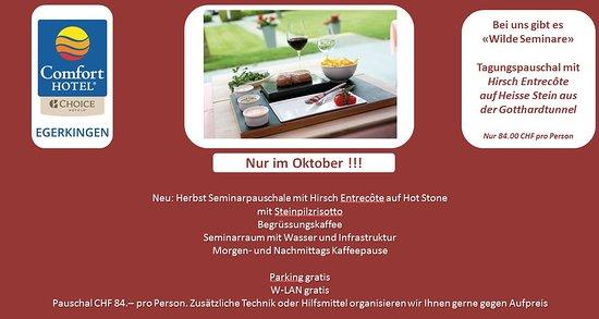 เอเกอร์คินเกน, สวิตเซอร์แลนด์: Wilde Seminare bei uns