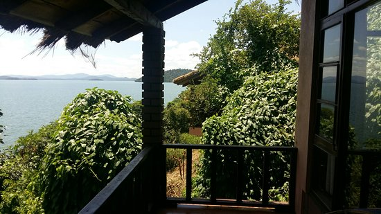 River Tern Lodge, Bhadra