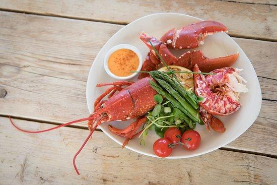 Stoke Fleming, UK: Lobster