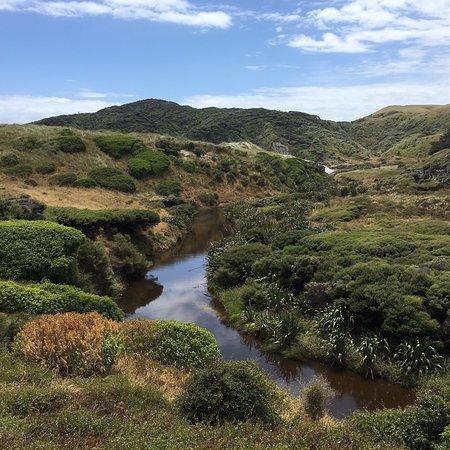 Puponga, نيوزيلندا: photo1.jpg