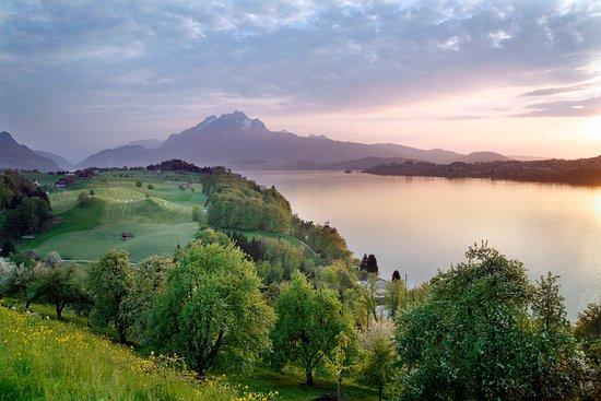 Weggis, Switzerland: Weitsicht