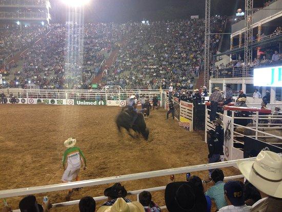 Barreto's Cowboy Festival: O Rodeio