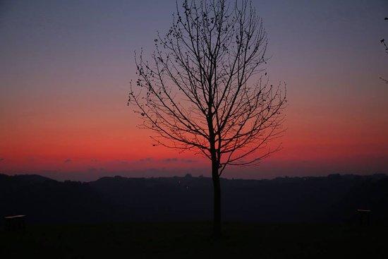 Nova Padua: Foto que fiz do por do sol