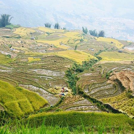 Lao Cai, Vietnam: Y Ty village
