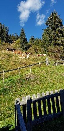 Hopfgarten in Defereggen, Oostenrijk: 20180929_160122_large.jpg