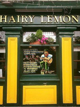 The Hairy Lemon Cafe Bar Dublin South City Centre Menu Prices Restaurant Reviews Reservations Tripadvisor