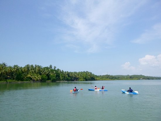 Promotional offer - 60 minutes Cruise, Nature & Discovery!: Kayaking in the river