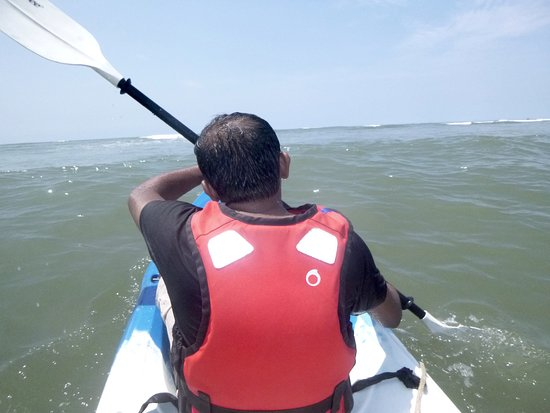 Promotional offer - 60 minutes Cruise, Nature & Discovery!: Kayaking in the sea