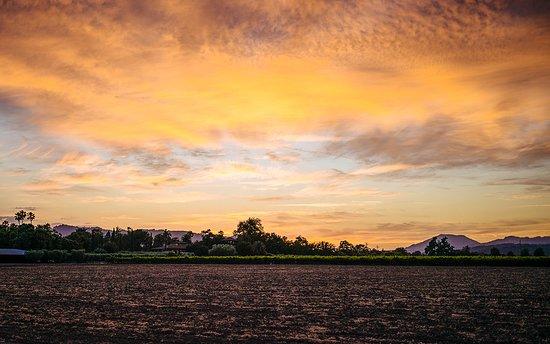 Round Pond Estate at Sunset