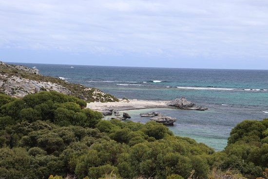 Rottnest Island, ออสเตรเลีย: This is a great place for snorkeling