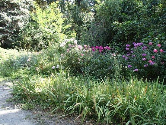 E. Gareyev Botanical Garden