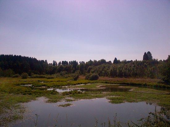 Wirtzfeld, Belgia: Rivierbedding en moeras
