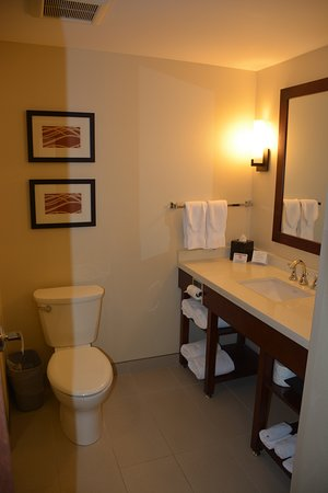 Nisku, Canada: Bathroom in our standard room