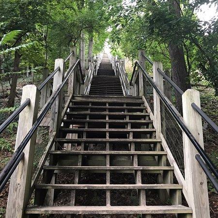 Mount Baldhead Park: photo0.jpg