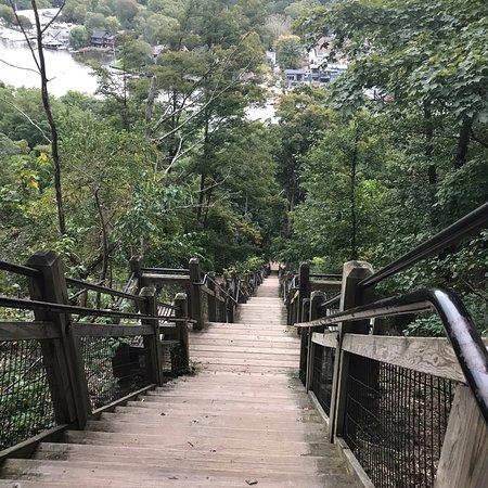 Mount Baldhead Park: photo1.jpg