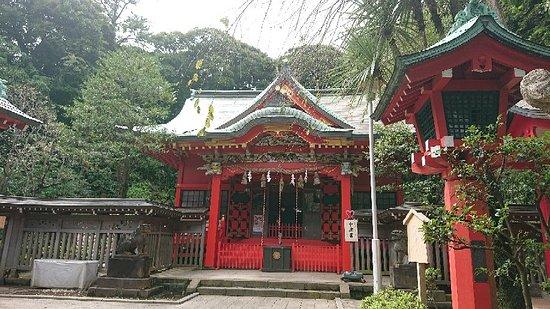 Enoshima, ญี่ปุ่น: DSC_0854_large.jpg