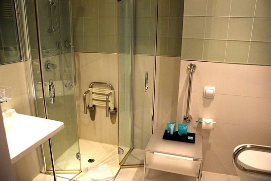 Business Room Disability Access Shower - Picture of Devero Hotel ...